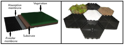 Acoustic absorption of green roof samples commercially available in southern Brazil – Stephan Paul