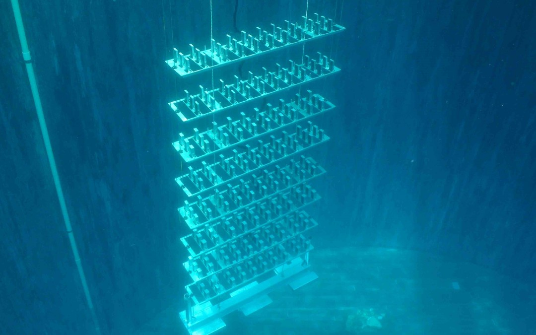 3aPA8 – Using arrays of air-filled resonators to reduce underwater man-made noise – Kevin M. Lee