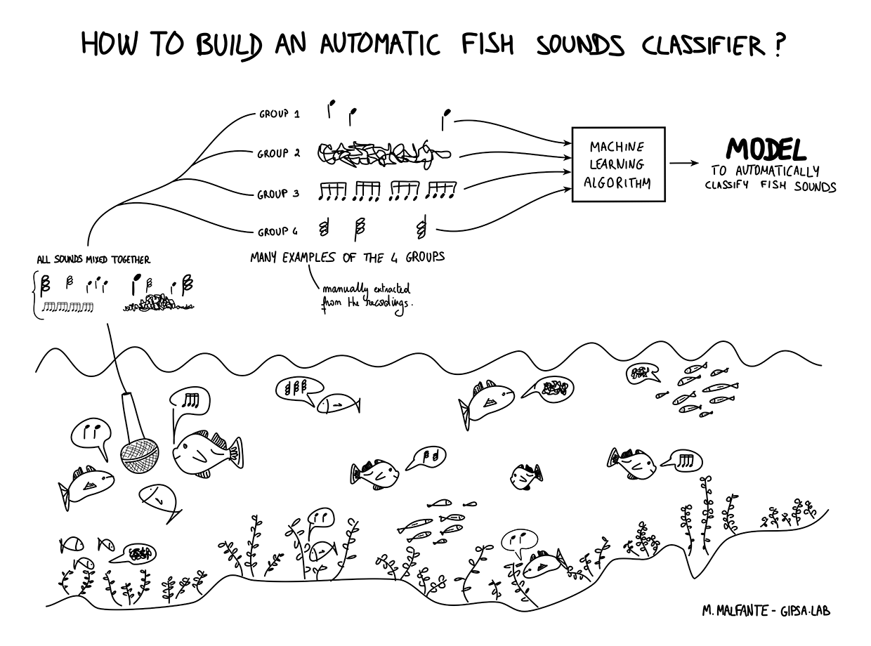 how_to_build_automatic_fish_sounds_classifier