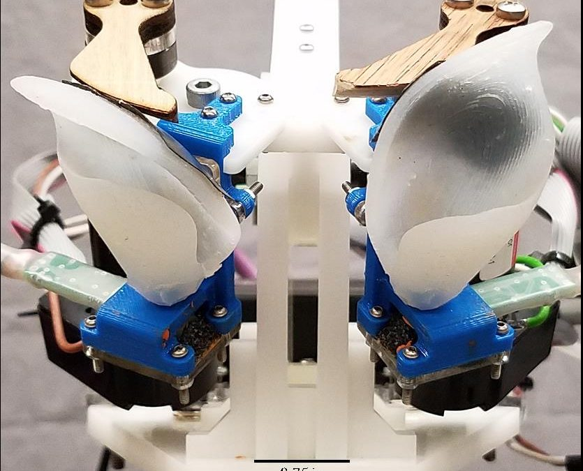 1aSC31 – Shape changing artificial ear inspired by bats enriches speech signals – Anupam K Gupta