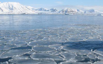 Ocean tides are conductors of underwater icy concerts – Oskar Glowacki