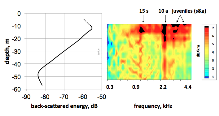 3aUWa6 – Inversion of geo-acoustic parameters from sound attenuation measurements in the presence of swim bladder bearing  – Orest Diachok
